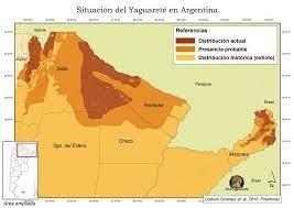 Distribución del yaguareté en Argentina. Fuente: Redyaguarete.org.ar