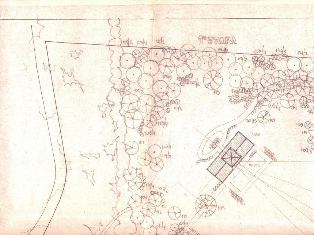 Plano de plantación con visuales